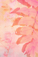 Artistc background with fern leaves