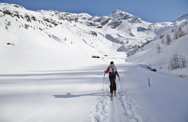 Woman ski touring, Villgraten Valley, Hohe Tauern, East Tyrol, Austria