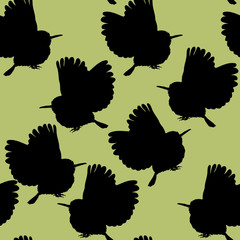 Seamless Pattern Cuban A Tody Bird Exotic Illustration