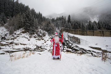 Santa Claus in the winter forest