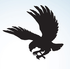 Eagle. Vector drawing