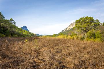 entre deux montagnes, un champs de friche, en herbe sèches