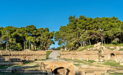 The Carthage Amphitheater, an acient Roman amphitheater in Tunis, Tunisia