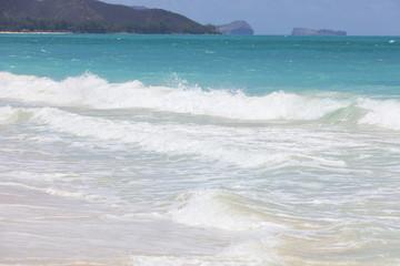 ハワイ ワイマナロビーチ