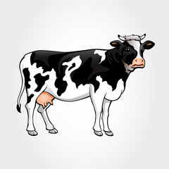A cow vector illustration