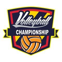 Volleyball design template