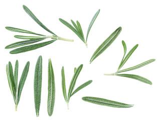 Rosemary herb.