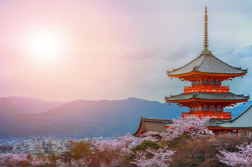 Evening. Pagoda with sky and cherry blossoms on the background.