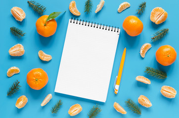 Notebook, pen and tangerine