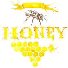 Honey, honeycomb, honey bee watercolor illustration.