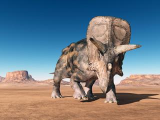 Dinosaurier Torosaurus in der Wüste