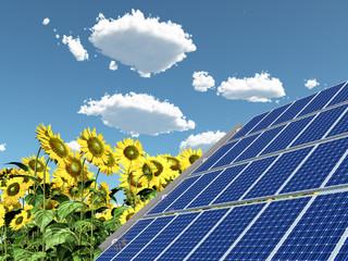 Solaranlage und Sonnenblumen