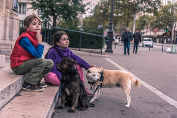 Kids waiting with Dogs
