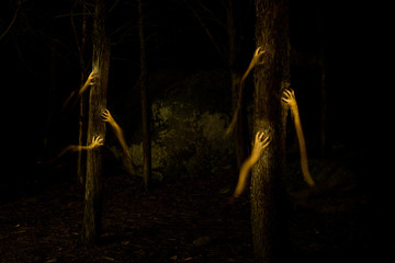 Dark hands in the darkness of the forest