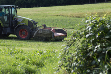 tractor haying grass own summer lawn