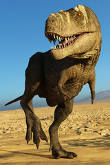 tyrannosaurus rex in the desert walking along