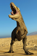 tyrannosaurus rex male in desert calling the female