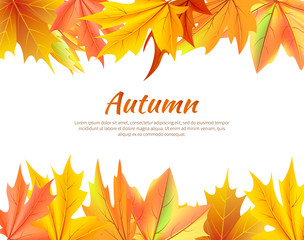 Autumn Background with Leaves at Top and Bottom