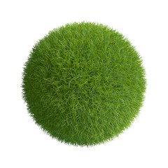 Grass sphere. Isolated on white background.