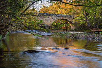 River Wansbeck below Mitford Bridge / The River Wansbeck rises in the Northumberland hills above Sweethope Lough, then journeys towards the North Sea near Newbiggin