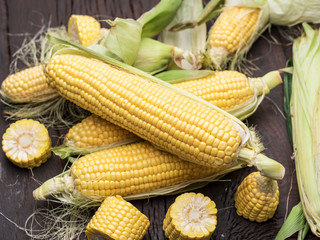 Ear of maize or corn on the dark wooden background.