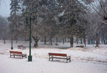 city park with benches and lantern in hoarfrost. wonderful foggy winter morning