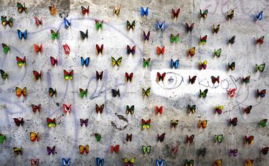 Foto auf Acrylglas Schmetterlinge im Grunge Butterflies on wall