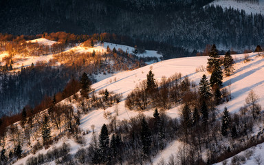 winter sunrise in Carpathian mountains. beautiful landscape with snowy hillsides