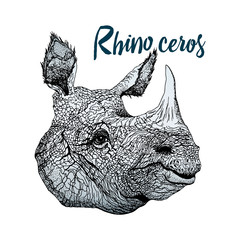 Color graphic vector - a rhinoceros head. Linear detailed illustration, isolated on background, for design.