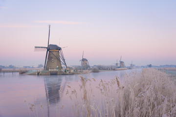 Windmills in the Netherlands in the soft sunrise light in winter