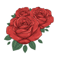 Buds of red roses. Vector illustration