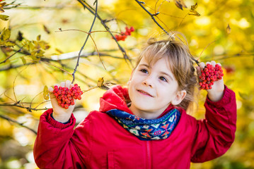 Dreamy young girl hold in hands Rowan berries and look out. Autumn park.