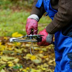 Manipulation d'un échenilloir avec des gants de protection