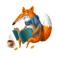 a fox in the scarf reeding a book