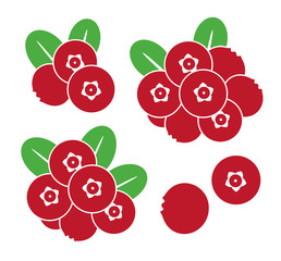 Cranberry. Icon set. Abstract cranberry on white background