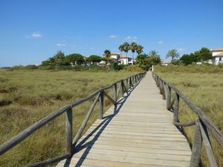 Isla Canela es una isla española situada en el término municipal de Ayamonte. Actualmente, además de los dos núcleos de población, la Barriada de Canela y Punta del Moral