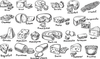 Cheeses / Creative conceptual vector. Sketch hand drawn cheese set illustration, engraving, ink, line art, vector.
