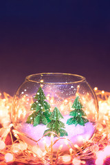 miniature of three fir trees in a glass bowl
