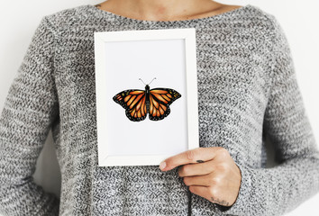 Closeup of butterfly photo frame