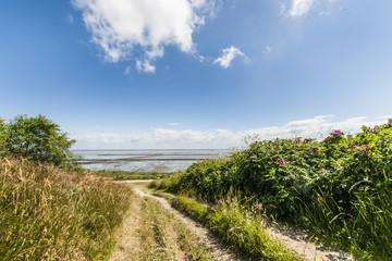 Path to Wadden Sea, Keitum, Sylt, Schleswig-Holstein, Germany