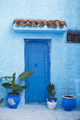 Blue vases with green plants stand before blue wall with blue doors somewhere in Morocco