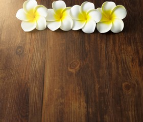 colorful flower on wood plate with sun ray