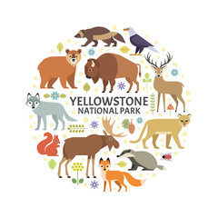 Vector illustration of Yellowstone National Park animals and plants arranged in a circle. Moose, elk, bear, wolf, fox, bison, badger, wolverine, mountain lion, bald eagle, isolated on white.