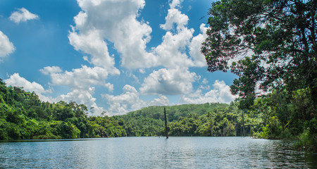 freshwater lake surrounded by green forest with beautiful cloud formation and blue sky
