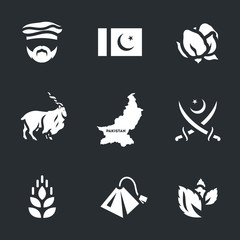 Vector Set of Pakistan Icons.