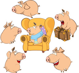 Set  Cartoon Illustration. A Cute Pigs  for you Design
