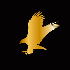 Golden silhouette of eagle  isolated on black background.
