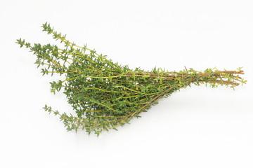 Una rama de tomillo fresco sobre un fondo blanco
