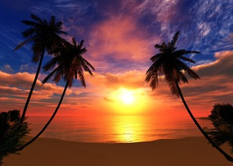 beautiful sunset on a tropical beach with palm trees