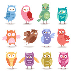 Owls vector cartoon cute bird set cartoon owlet character kids animal baby art for children owlish collection isolated on white background